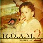 R.O.A.M. 2: The Greater Fool