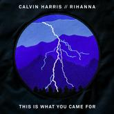 Calvin Harris - This Is What You Came For Feat. Rihanna