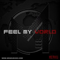 Feel My World