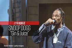 "LyriQuiz - Snoop Dogg ""Gin & Juice"""