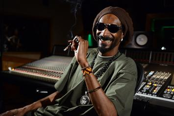Snoop Dogg Pays Off $546,000 Tax Lien