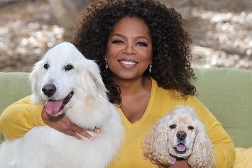 Oprah Can't Pick Between Donald Trump Or Kanye West For President