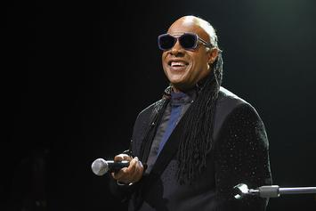 Stevie Wonder Stokes Conspiracy Rumors That He's Not Actually Blind